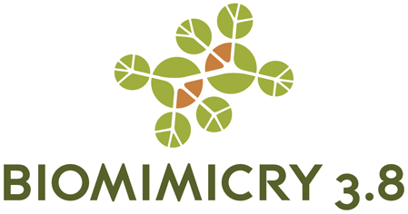 Feature.3 BiomimicryLogo