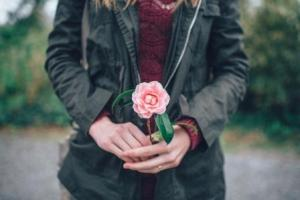 rose in woman's hands