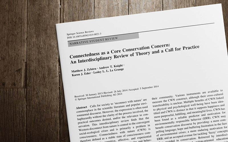Connectedness as a core conservation concern