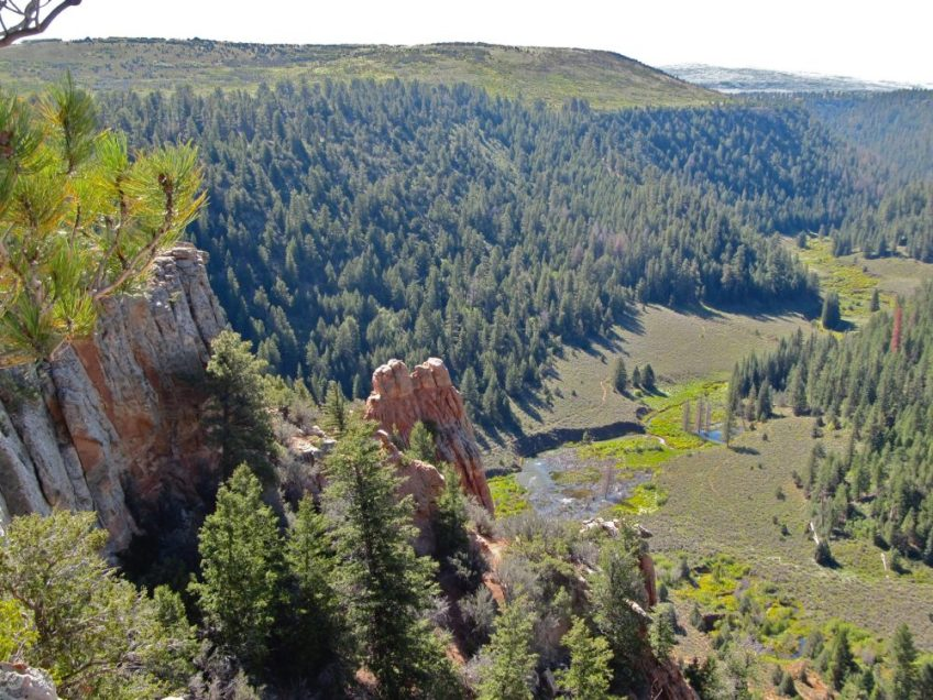 Colorado Wilderness Quest
