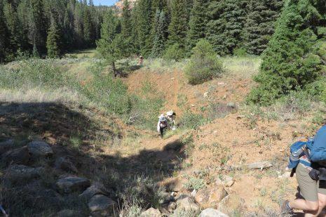 Colorado women's quest