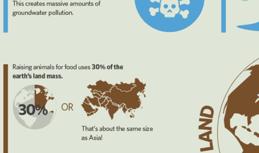 Veganism and the Environment Infographic