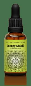 fh energy shieldnew