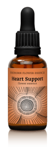 fh heart support new