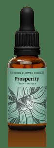 fh prosperitynew