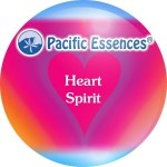 pc heartspiritnew