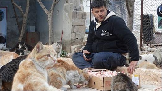 cat-man-aleppo_thumb Kasih Sayang Seorang Pria Terhadap Kucing, Membuatnya Tetap Bertahan Tinggal di Zona Peperangan