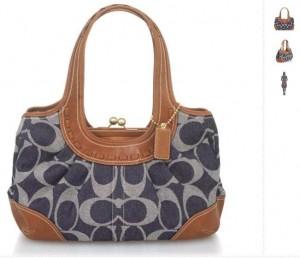 Coach Handbag For Rent