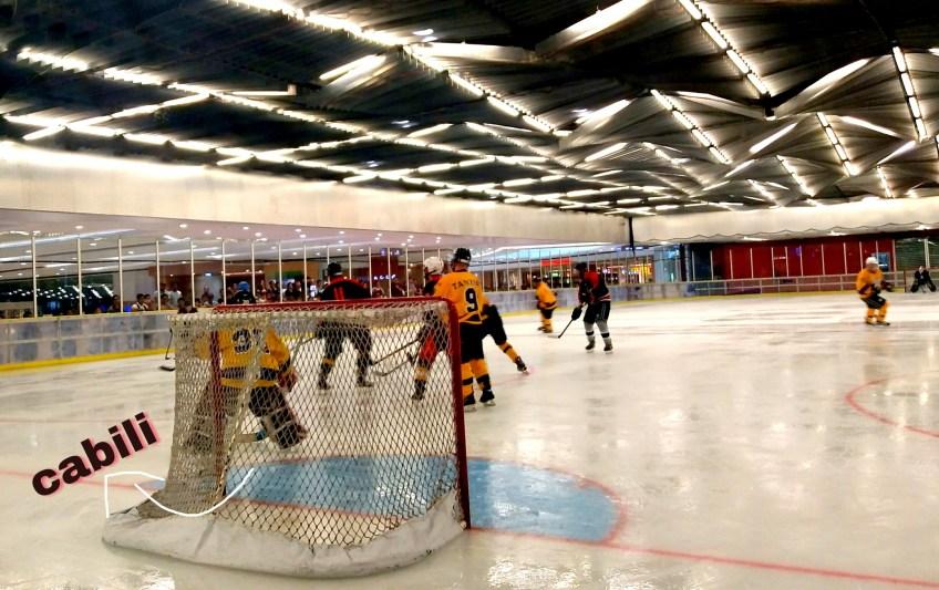 3rd Philippine Ice Hockey Tournament