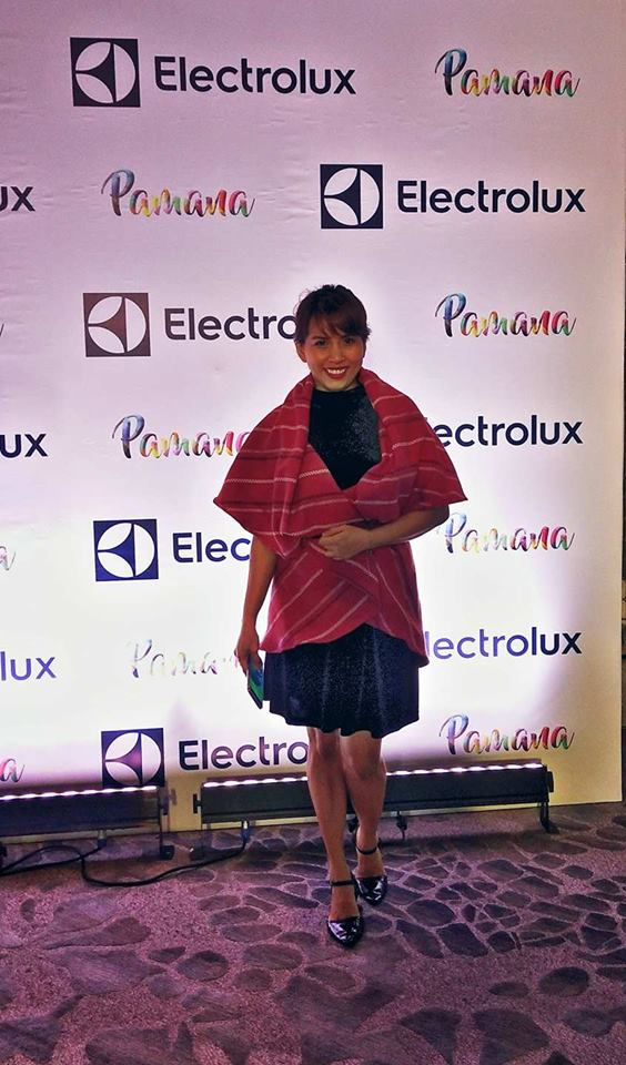 Elecrrlux FashionCare Council