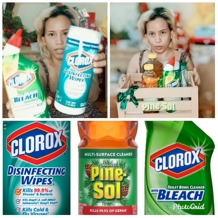 Clean Home for 2020 with Pine-Sol