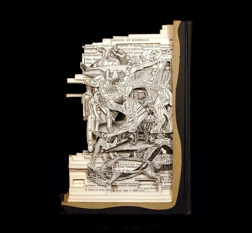 book-sculpture-book-surgeon-brian-dettmer (13)