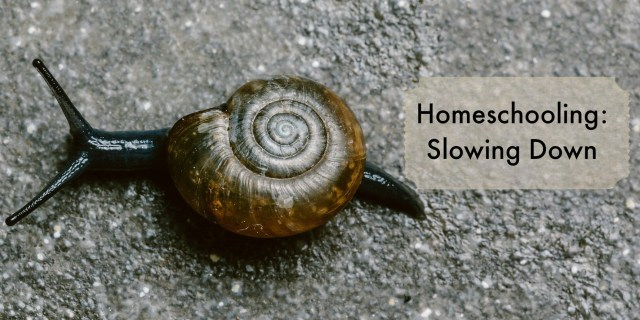 Homeschooling: Slowing Down