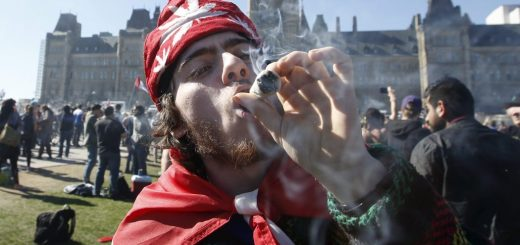 South Africa Top Court Legalises Use of Marijuana