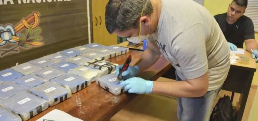 Argentina Government Burns 389Kg of Cocaine Found At Russian Embassy