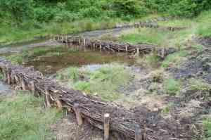 Brushwood check dams