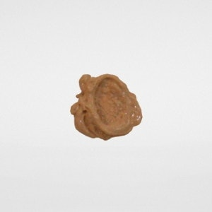 Ivory/P Tone Tinted Moisturizer', Earth's Secret Pure Mineral Makeup