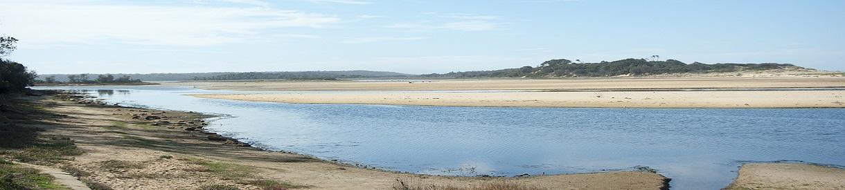 Coastal ASS