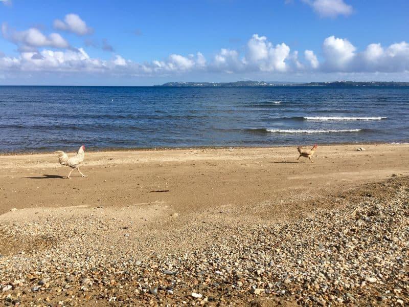 The beach in Barangay Motag on mainland Malay near the Hangout Beach Resort, with a view of Boracay Island.