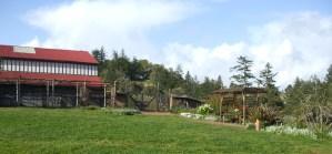 storm-foundation-jan-2010-soso-canada-068.jpg