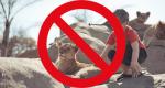 Spotting Conservation Volunteering Fakes