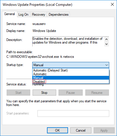 disable the windows update service