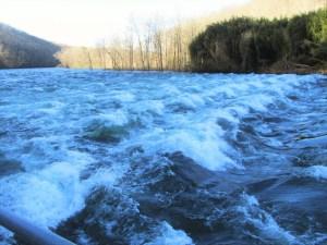 Clinch River at Weir Dam