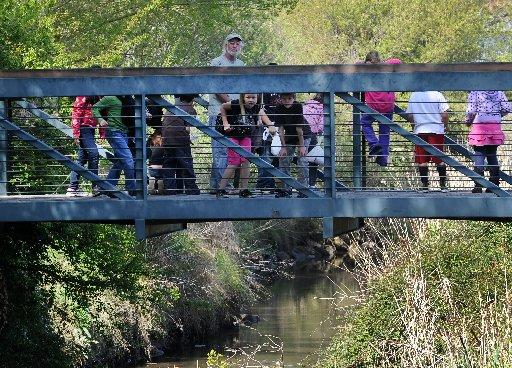 John Ridler gives Las Juntas Elementary School third-graders a field trip tour of the beaver dams in downtown Martinez Friday April 6, 2012 in Martinez, Calif. The class has been studying beavers for the past week. (Karl Mondon/Staff)