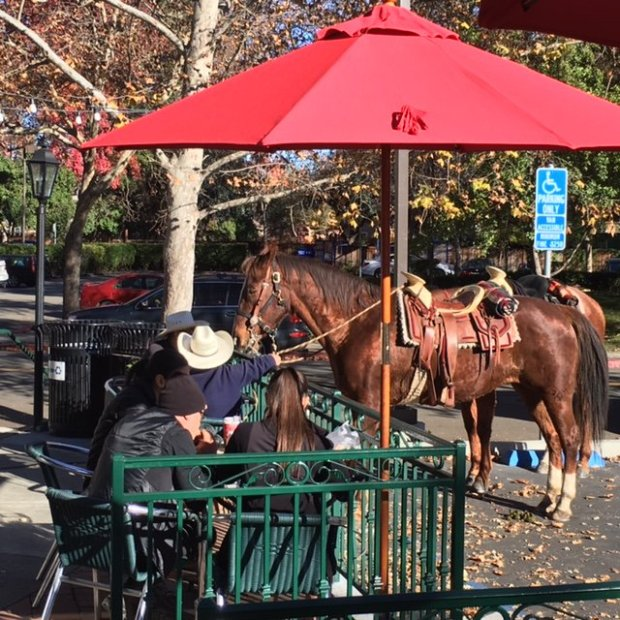 Two riders with cowboy hits tie up their horses while eating lunch at Domenico's Deli on Hartinez Avenue in Danville
