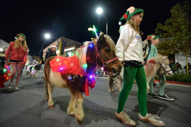 Elis Enos, 12, of Concord, leads a Miniature horses named Bon Jovi down down Broadway Plaza during the Holiday Parade of Lights, Open House and Tree Lighting in Walnut Creek, Calif., on Thursday, Dec. 1, 2016. (Doug Duran/Bay Area News Group)