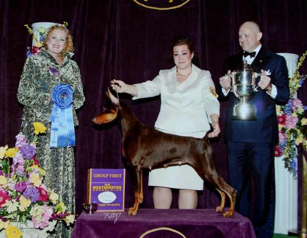 A photograph of Kimberly Meredith-Cavanna, on the left, as a judge in the 2010 Westminster Kennel Club Dog Shows copied in her Pleasant Hill, Calif., home on Wednesday, Jan. 25, 2017. Meredith-Savanna will be among the judges at the 141st annual Westminster Kennel Club Dog Show in New York on February 13-14. The dog in this photo is the mother of one of Meredith-Savanna's own dogs, Moxie. (Dan Honda/Bay Area News Group)