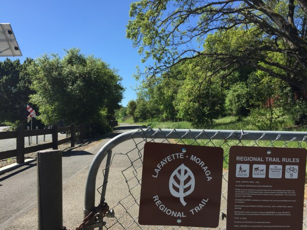 The city of Lafayette and PG&E have reached an agreement allowing the utility to remove 272 trees on public and private property as part of PG&E's Community Pipeline Safety Initiative. A number of trees will be removed along the Lafayette Moraga Regional Trail, which is pictured here