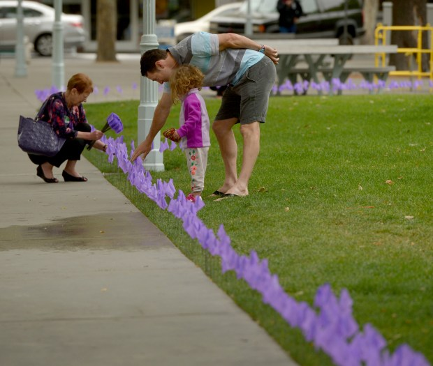 To raise awareness about World Elder Abuse Awareness Day on June 15, 4,000 purple flags are added to Todos Santos Plaza in Concord, Calif., on Thursday, June 8, 2017. Nancy O'Keefe, of Concord, from Ombudsman Services, places purple flags in the ground while Juliet Drescher, 3, and her dad Joel Drescher, both of Orinda, explore the colorful addition to the park. (Susan Tripp Pollard/Bay Area News Group)