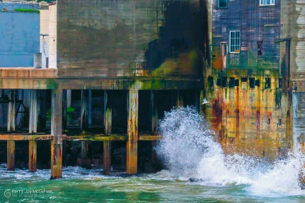 "Kerry McGehee's ""Cannery Splash"" photo won first place at the Livermore Art Association's 60th Anniversary and Spring Art Show, along with the City of Livermore award."