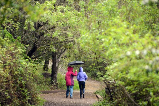 Two visitors to Tilden Regional Park share an umbrella as they stroll under rainy skies along a path near Jewel Lake in Berkeley on March 21, 2016. (Kristopher Skinner/Staff archives)