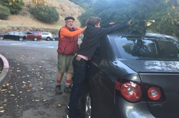 John Stewart, assistant chair of the Piedmont Boy Scouts Tree Lot, and Boy Scout Jack Gross-Whitaker, 13, help load a tree onto a customer's car Monday.(Sarah Tan/For Bay Area News Group)
