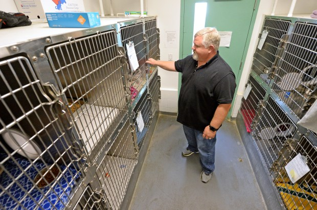 antioch s new animal services manager brings national experience