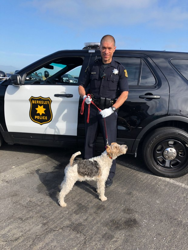 Berkeley police shared this image Wednesday, June 6, 2018 of Officer Hugo Ordaz, who returned missing dog Rex to its owner.