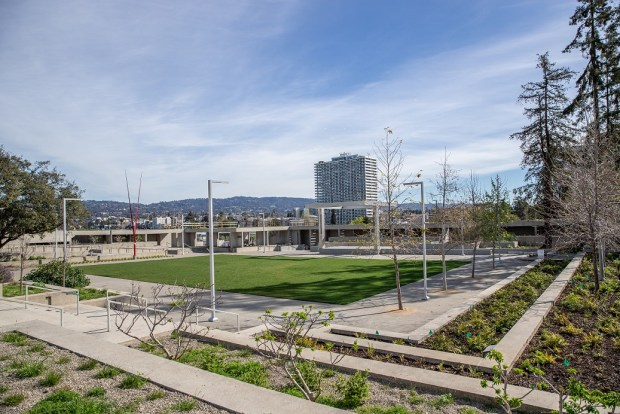 OMCA Re-Opening Campus