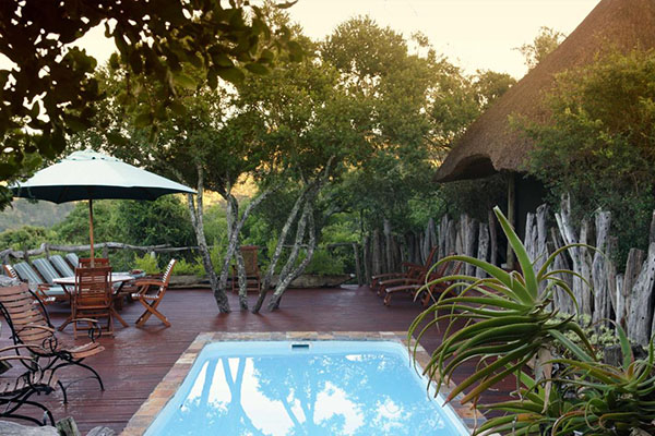 14 Day Garden Route Package Lalibela Tree Tops Safari Lodge 3