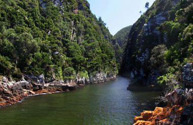 14 Day Garden Route Package Tsitsikamma National Park