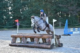 Area Arena Eventing4 071220