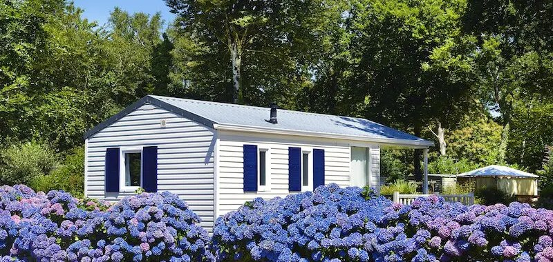 mobile home surrounded by flowers