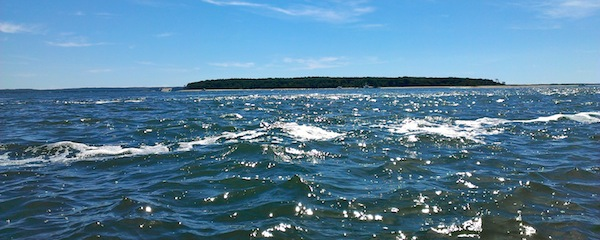 Robins Island as viewed from the North Race.