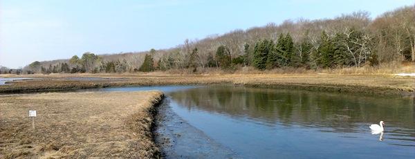 In Brushs Creek