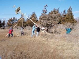 Osprey pole