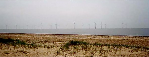 The Scroby Sands Wind Farm not far from Southwold, England | CL Young Photo