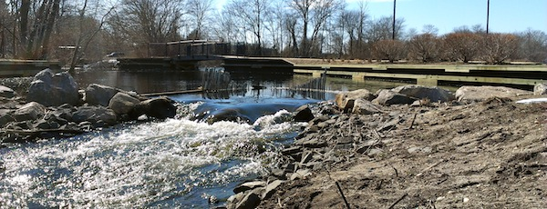 The fish ladder in Grangebel Park in Riverhead