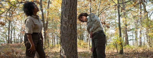 Examining a tree with beetle damage. | Daniel Brennan photo for the Long Island National Wildlife Refuge Complex