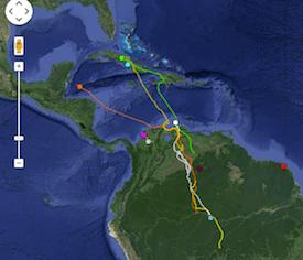 Rob Bierregaard's osprey tracking as of March 16.